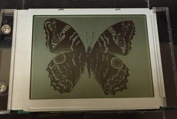tranflective monochrome display